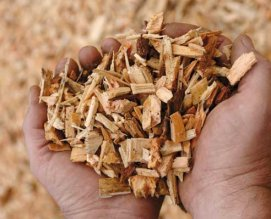 lignocellulosic material - wood chips