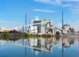 Sustainability - Pulp, paper, forest products industry