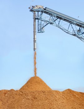 Woodchips Processing