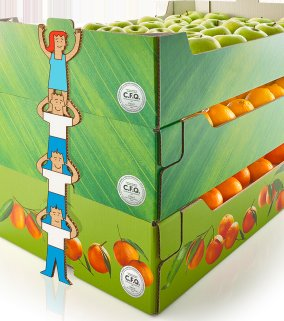CFQ - corrugated packaging trays used for fruits and vegetables