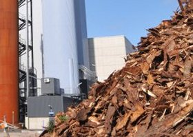 carbon-neutral biomass energy
