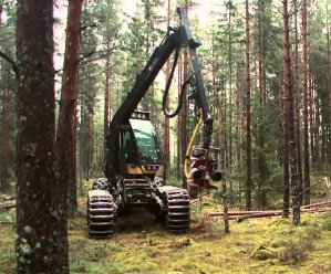 Forestry in Sweden