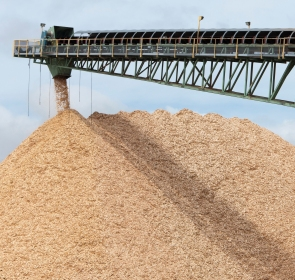 wood chip pile at pulp mill