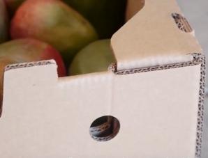 corrugated shipping box for mangos