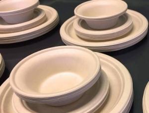 Molded Fiber plates and bowls