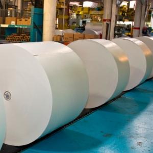 Willamette Falls Paper Company