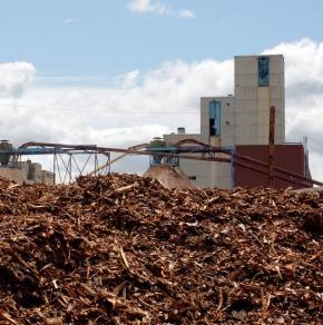 biomass - pulp mill