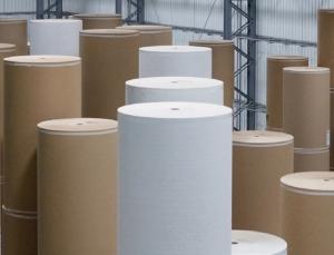 rolls of linerboard
