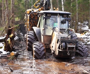 logging in wet conditions