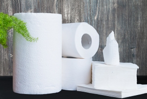 Forest Products - tissue and paper towels