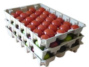 molded pulp fruit tray