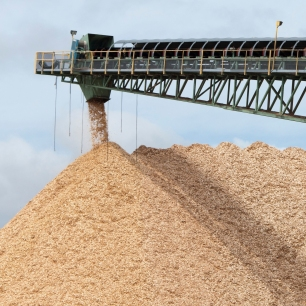 wood chips - pulping